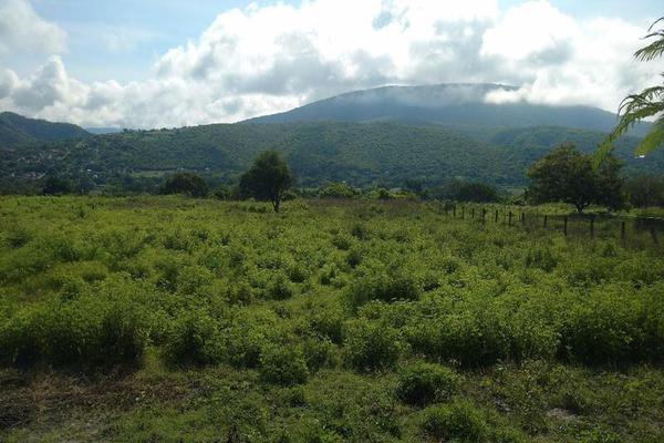 Foto de terreno habitacional en venta en  , francisco javier mina, tlaltizapán de zapata, morelos, 7962256 No. 06