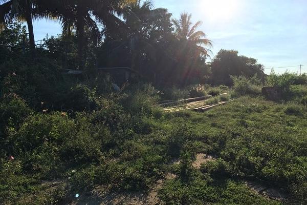 Foto de terreno comercial en venta en  , francisco medrano, altamira, tamaulipas, 2627897 No. 02