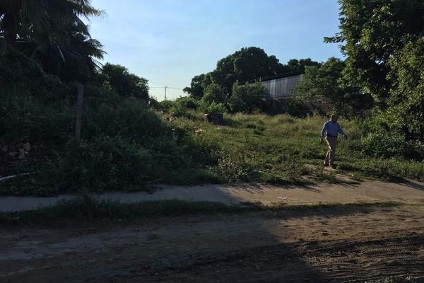 Foto de terreno comercial en venta en  , francisco medrano, altamira, tamaulipas, 2627897 No. 03
