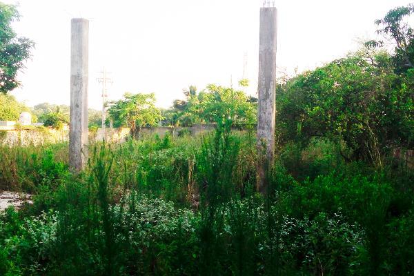 Foto de terreno habitacional en venta en  , francisco medrano, altamira, tamaulipas, 2642582 No. 02