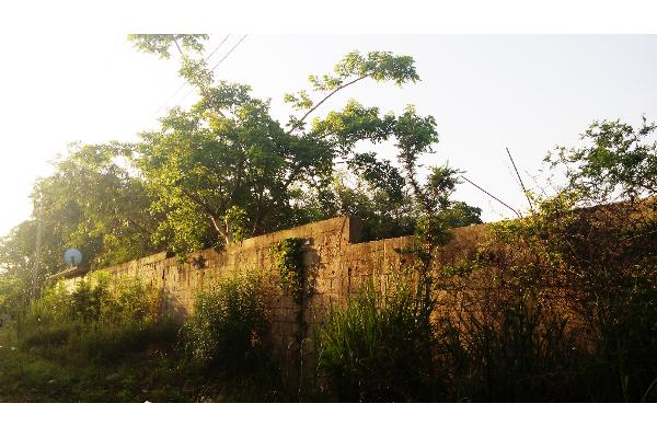Foto de terreno habitacional en venta en  , francisco medrano, altamira, tamaulipas, 2642582 No. 05