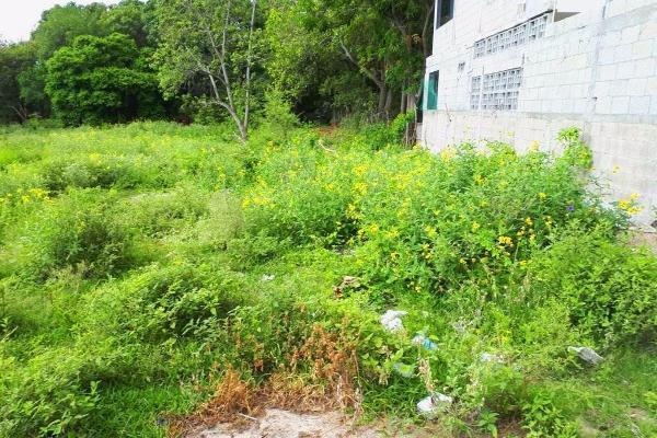 Foto de terreno habitacional en venta en  , francisco medrano, altamira, tamaulipas, 3428040 No. 03