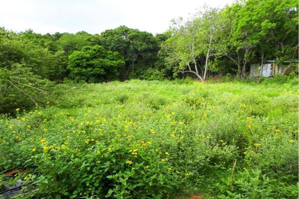 Foto de terreno habitacional en venta en  , francisco medrano, altamira, tamaulipas, 7490177 No. 02