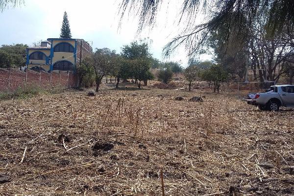 Foto de terreno comercial en venta en  , francisco villa, jacona, michoacán de ocampo, 3137405 No. 09