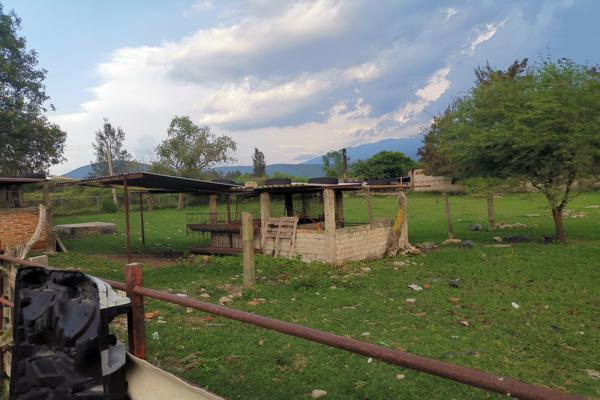 Foto de terreno habitacional en venta en francisco zepeda , santa cruz de las flores, tlajomulco de zúñiga, jalisco, 9031672 No. 11