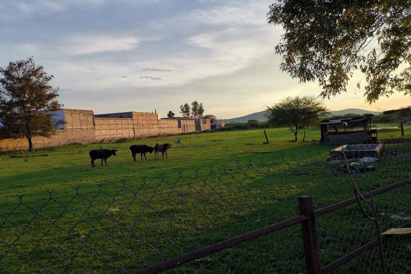 Foto de terreno habitacional en venta en francisco zepeda , santa cruz de las flores, tlajomulco de zúñiga, jalisco, 9031672 No. 31