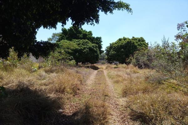 Foto de terreno habitacional en venta en fray juan de zumarraga 441, las juntas, san pedro tlaquepaque, jalisco, 15733652 No. 08