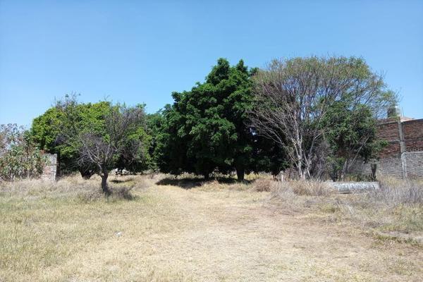 Foto de terreno habitacional en venta en fray juan de zumarraga 441, las juntas, san pedro tlaquepaque, jalisco, 15733652 No. 09