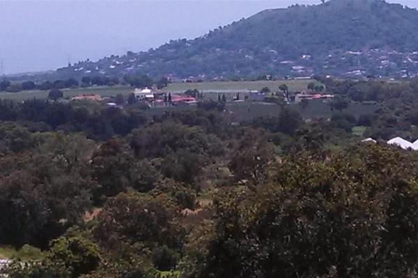 Foto de terreno habitacional en venta en frayle 1, nicolás zapata, totolapan, morelos, 8873122 No. 02
