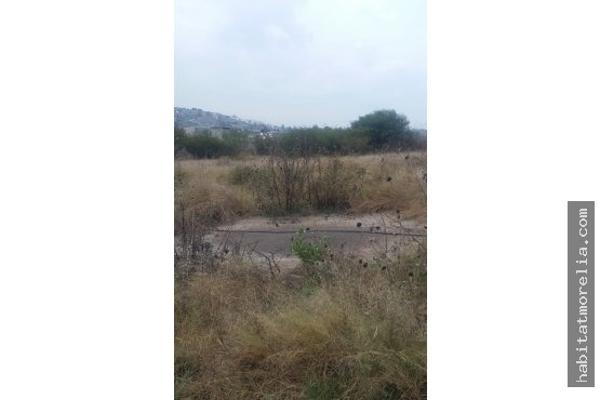 Foto de terreno habitacional en venta en  , fresnos oriente, morelia, michoacán de ocampo, 6169700 No. 05