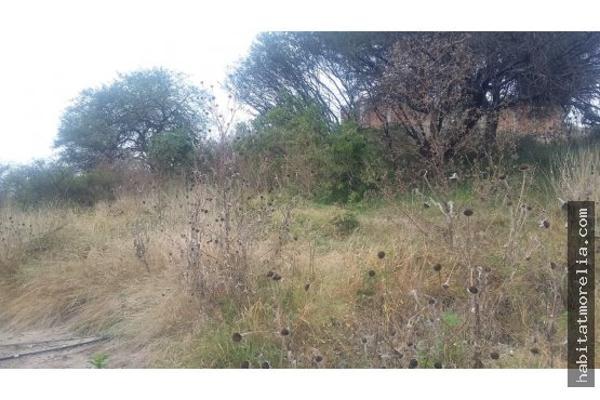 Foto de terreno habitacional en venta en  , fresnos oriente, morelia, michoacán de ocampo, 6169700 No. 07