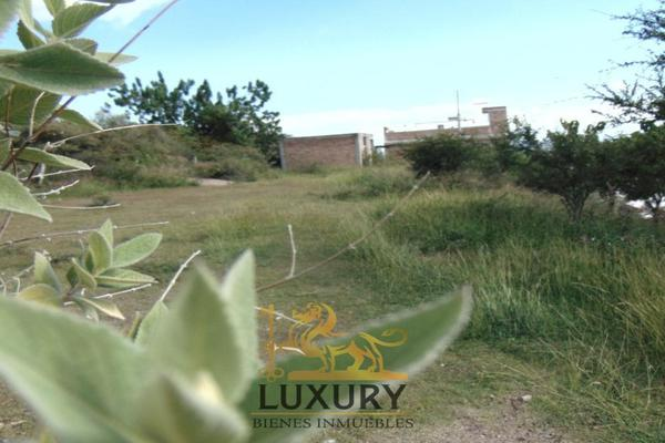 Foto de terreno habitacional en venta en gardenia , cerro lindavista, guanajuato, guanajuato, 17084144 No. 04