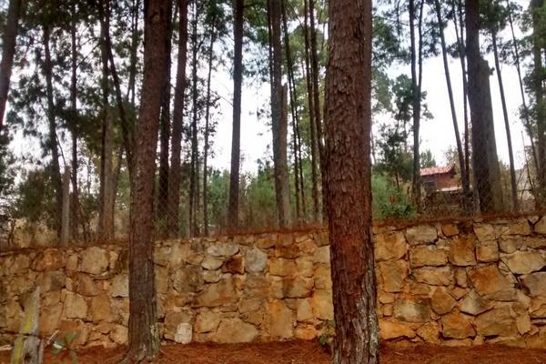 Foto de terreno habitacional en venta en girasoles , la garita, san cristóbal de las casas, chiapas, 8741740 No. 01