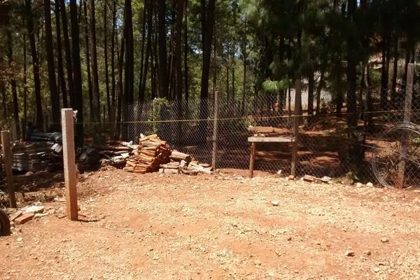 Foto de terreno habitacional en venta en girasoles , la garita, san cristóbal de las casas, chiapas, 8741740 No. 04
