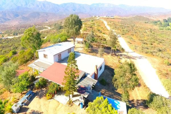 Foto de rancho en venta en  , gómez morín, ensenada, baja california, 14026854 No. 01