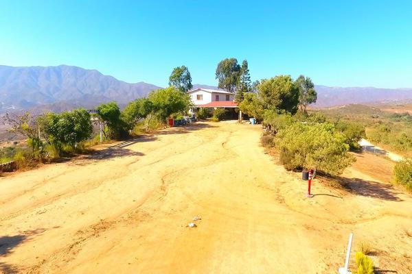 Foto de rancho en venta en  , gómez morín, ensenada, baja california, 14026854 No. 03