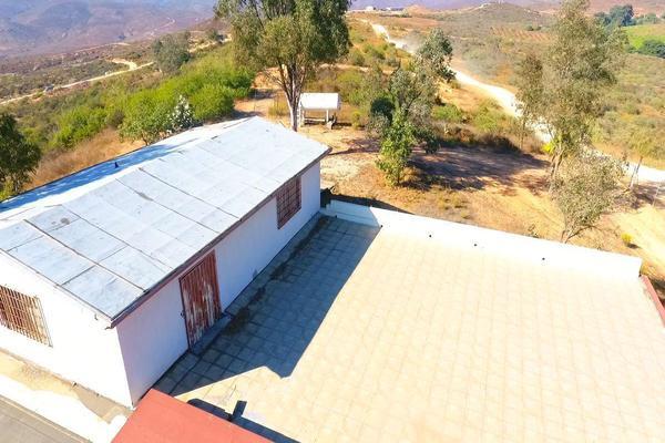 Foto de rancho en venta en  , gómez morín, ensenada, baja california, 14026854 No. 05