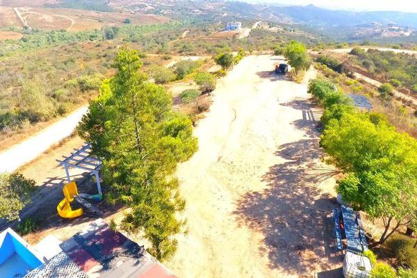 Foto de rancho en venta en  , gómez morín, ensenada, baja california, 14026854 No. 07