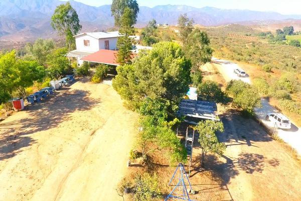 Foto de rancho en venta en  , gómez morín, ensenada, baja california, 14026854 No. 09