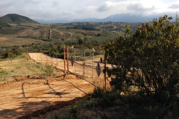 Foto de rancho en venta en  , gómez morín, ensenada, baja california, 14026854 No. 11