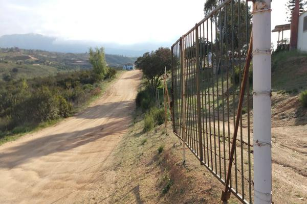 Foto de rancho en venta en  , gómez morín, ensenada, baja california, 14026854 No. 12