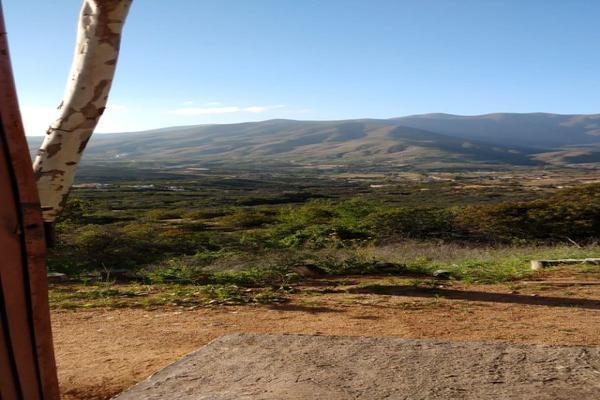 Foto de rancho en venta en  , gómez morín, ensenada, baja california, 14026854 No. 13