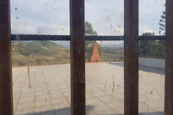 Foto de rancho en venta en  , gómez morín, ensenada, baja california, 14026854 No. 30