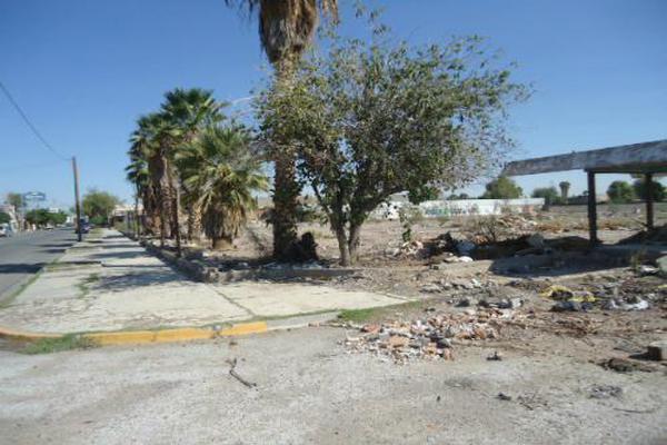 Foto de terreno habitacional en renta en  , gómez palacio centro, gómez palacio, durango, 8065471 No. 02