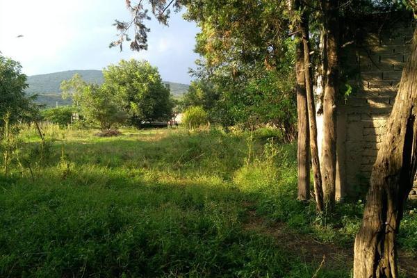 Foto de terreno habitacional en venta en gonzales bocanegra 53, santa cruz de las flores, tlajomulco de zúñiga, jalisco, 11624580 No. 15