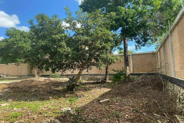 Foto de terreno habitacional en venta en  , gran santa fe, benito juárez, quintana roo, 0 No. 04