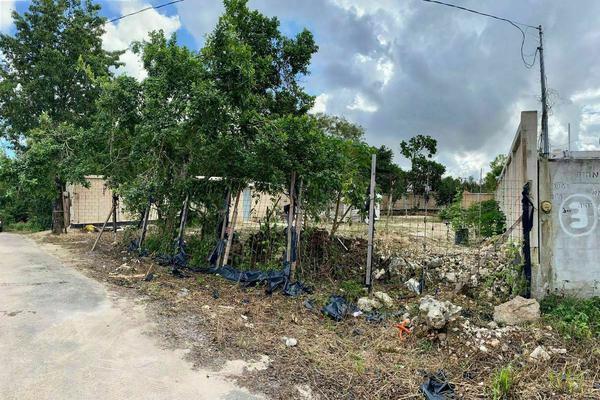 Foto de terreno habitacional en venta en  , gran santa fe, benito juárez, quintana roo, 0 No. 06