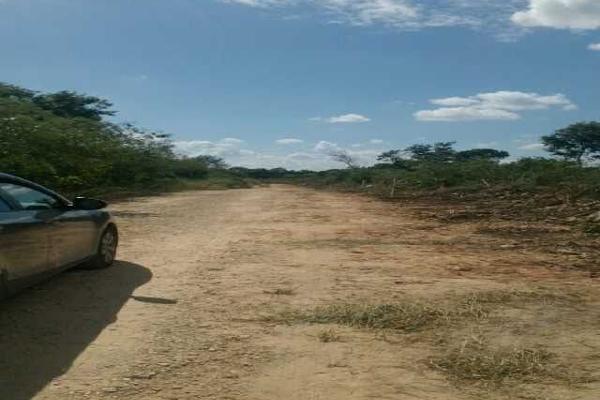 Foto de terreno habitacional en venta en  , gran santa fe, mérida, yucatán, 2636957 No. 02