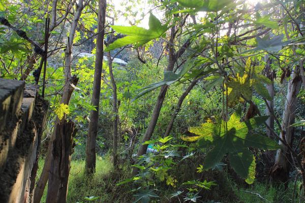 Foto de terreno habitacional en venta en granjas de guadalupe , granjas lomas de guadalupe, cuautitlán izcalli, méxico, 6163042 No. 04