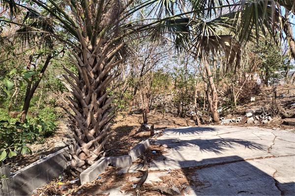 Foto de terreno habitacional en venta en  , guadalupe avante, guadalupe, nuevo león, 19996126 No. 10