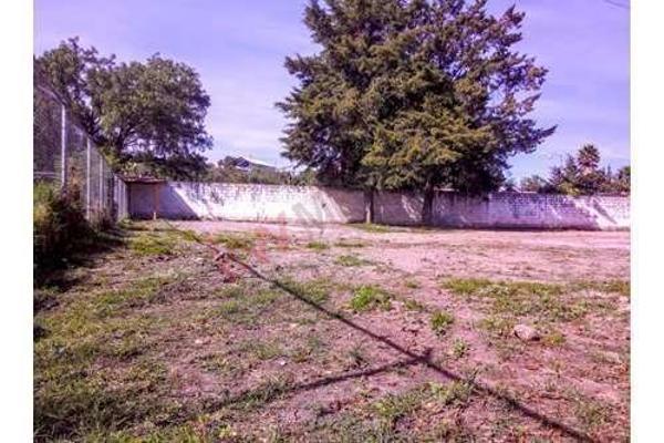 Foto de nave industrial en renta en  , guadalupe, tepeaca, puebla, 8854751 No. 32