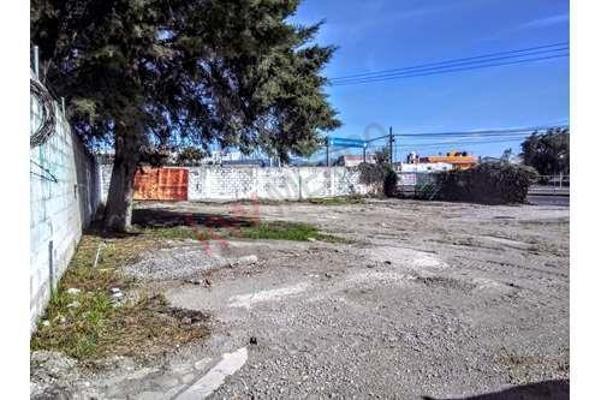 Foto de nave industrial en renta en  , guadalupe, tepeaca, puebla, 8854751 No. 33