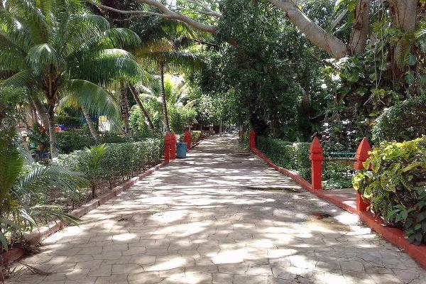 Foto de terreno habitacional en venta en  , guadalupe, ticul, yucatán, 4632715 No. 05