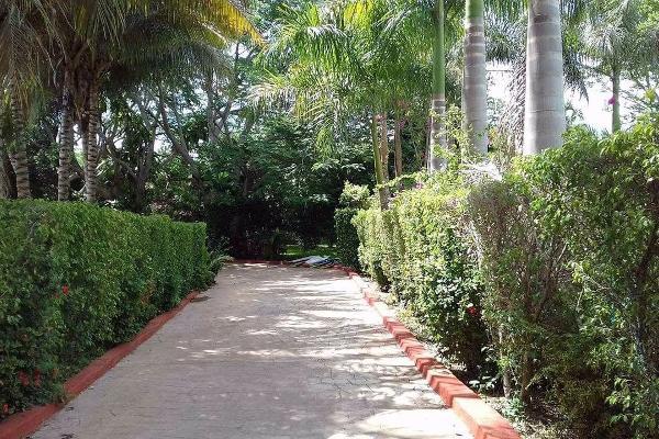 Foto de terreno habitacional en venta en  , guadalupe, ticul, yucatán, 4632715 No. 06