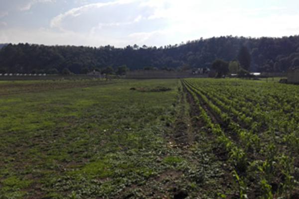 Foto de terreno habitacional en venta en  , guadalupe victoria, capulhuac, méxico, 2638436 No. 01