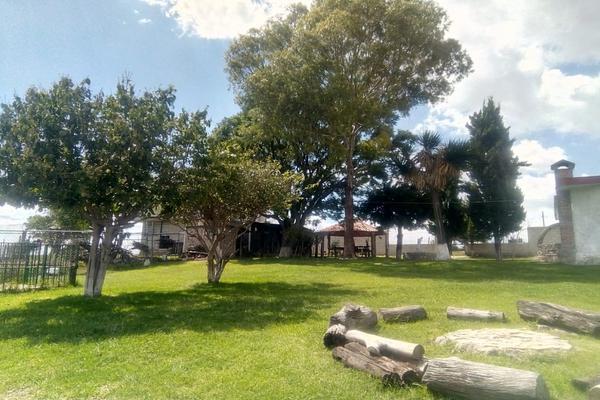 Foto de rancho en venta en guadalupe victoria , guadalupe victoria valsequillo, puebla, puebla, 5775097 No. 17