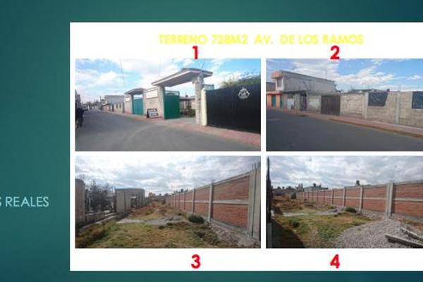 Foto de terreno habitacional en venta en  , guadalupe victoria, otzolotepec, méxico, 7913495 No. 03
