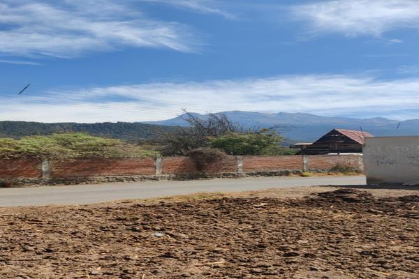 Foto de terreno habitacional en venta en guadalupe victoria s/n , sector sacromonte, amecameca, méxico, 20037072 No. 04