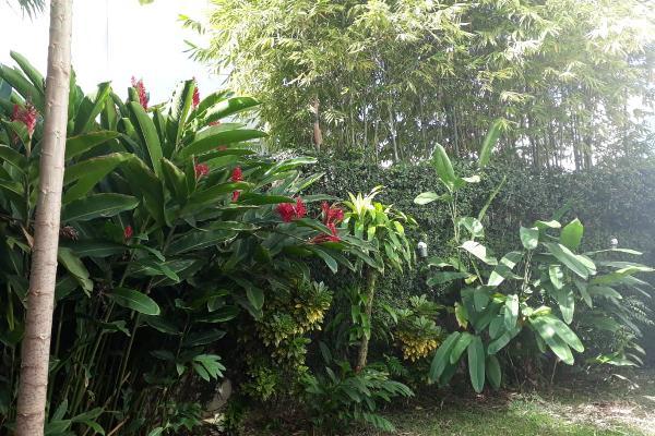 Foto de casa en venta en guayaba , el country, centro, tabasco, 6186838 No. 09