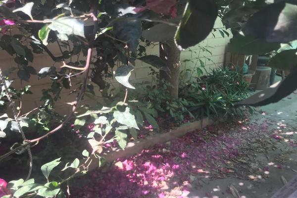 Foto de casa en venta en gustavo baz prada , gustavo baz prada los reyes ixtacala, tlalnepantla de baz, méxico, 18878011 No. 10