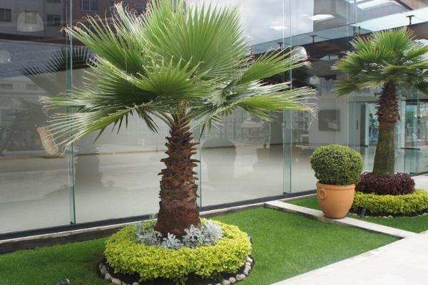 Foto de departamento en venta en  , hacienda de las palmas, huixquilucan, méxico, 8888014 No. 26