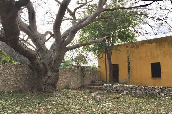 Foto de rancho en venta en  , hacienda mulsay, mérida, yucatán, 19747775 No. 06