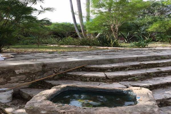 Foto de rancho en venta en  , hacienda mulsay, mérida, yucatán, 19747775 No. 07