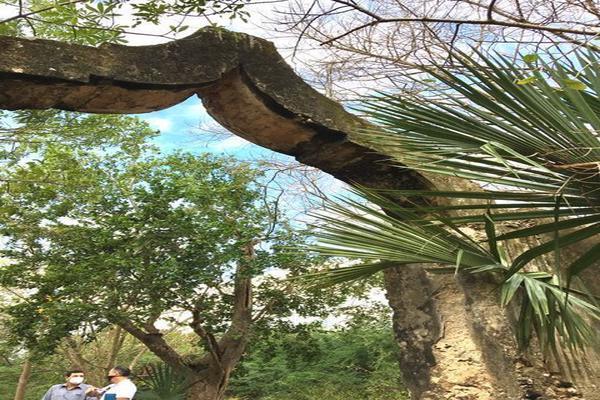 Foto de rancho en venta en  , hacienda mulsay, mérida, yucatán, 19747775 No. 10