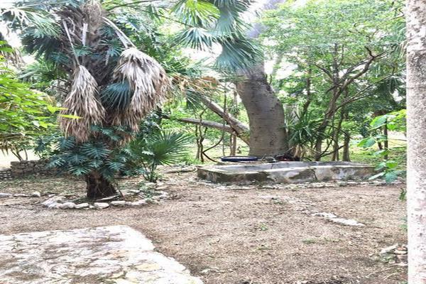 Foto de rancho en venta en  , hacienda mulsay, mérida, yucatán, 19747775 No. 17