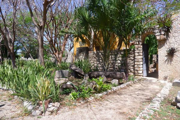 Foto de rancho en venta en  , hacienda mulsay, mérida, yucatán, 19819415 No. 04